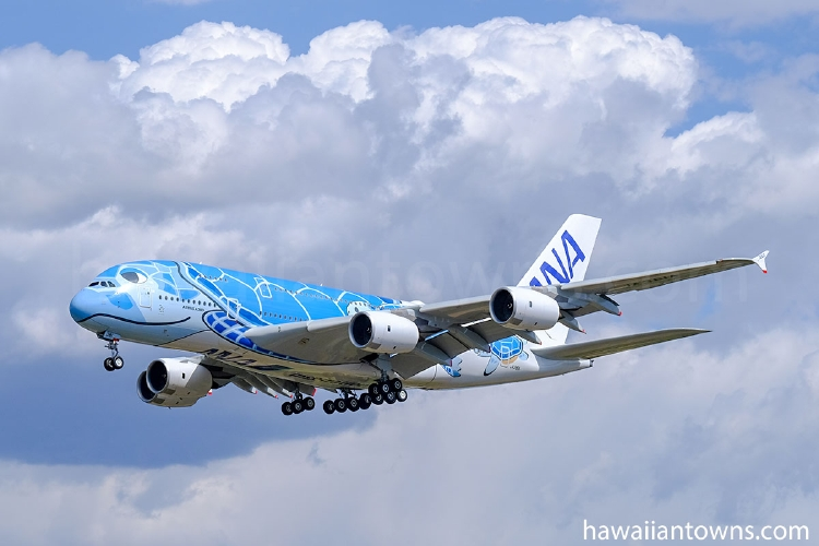 ANAのA380型機