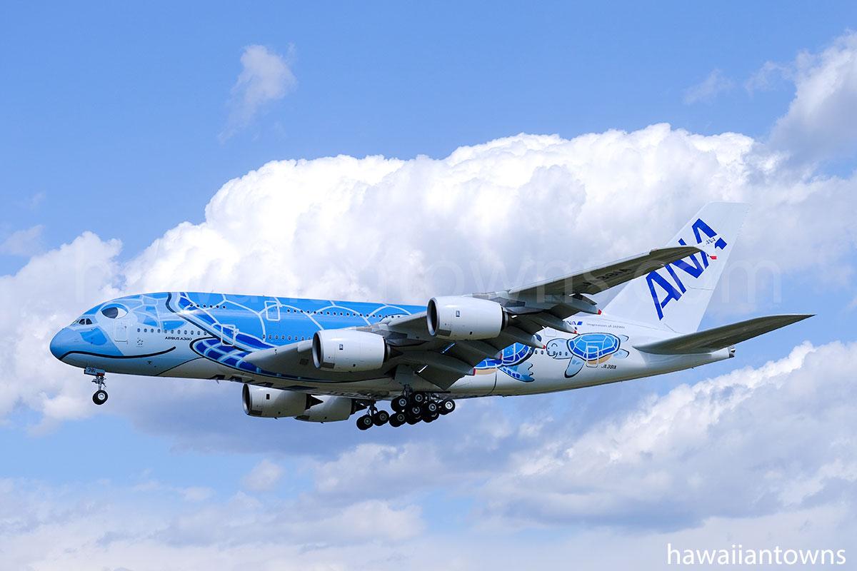 ANAのA380