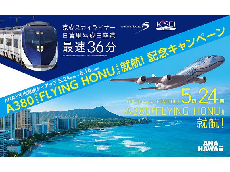 エアバス A380『FLYING HONU』就航キャンペーン