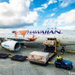 ハワイアン航空 N391HA モアナと伝説の海 特別塗装機