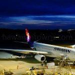 成田空港 ハワイアン航空 A332